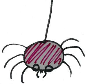 boris_the_spider